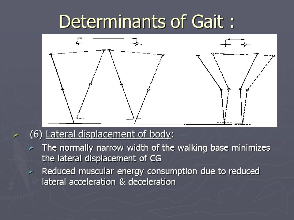 Determinants of Gait :  (6) Lateral displacement of body:  The normally narrow width of the walking base minimizes the lateral displacement of CG  Reduced muscular energy consumption due to reduced lateral acceleration & deceleration