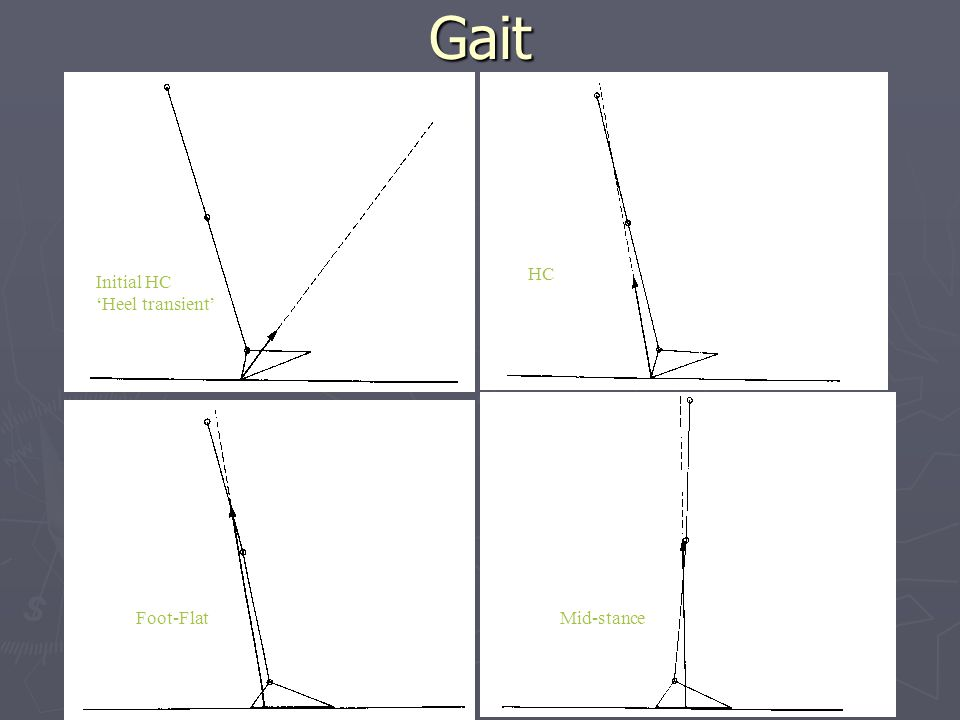 Gait Initial HC 'Heel transient' HC Foot-FlatMid-stance