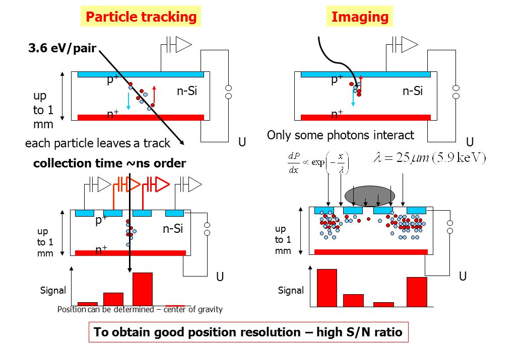 n-Si U p+p+ n+n+ U up to 1 mm p+p+ n+n+ n-Si U up to 1 mm n+n+ p+p+ Signal Position can be determined – center of gravity Particle trackingImaging each particle leaves a track Only some photons interact U up to 1 mm Signal 3.6 eV/pair collection time ~ns order To obtain good position resolution – high S/N ratio