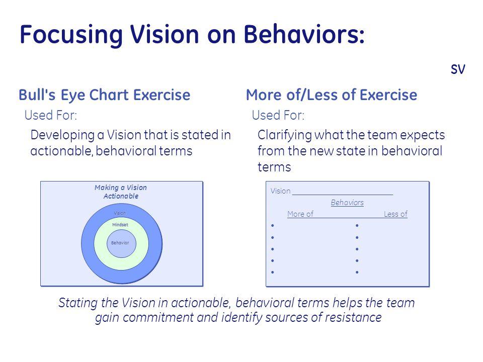 Vision _________________________ Behaviors More ofLess of Vision _________________________ Behaviors More ofLess of Focusing Vision on Behaviors: SV B