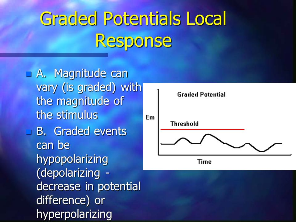 Graded Potentials Local Response n 3.Graded potentials are conducted with decrement.