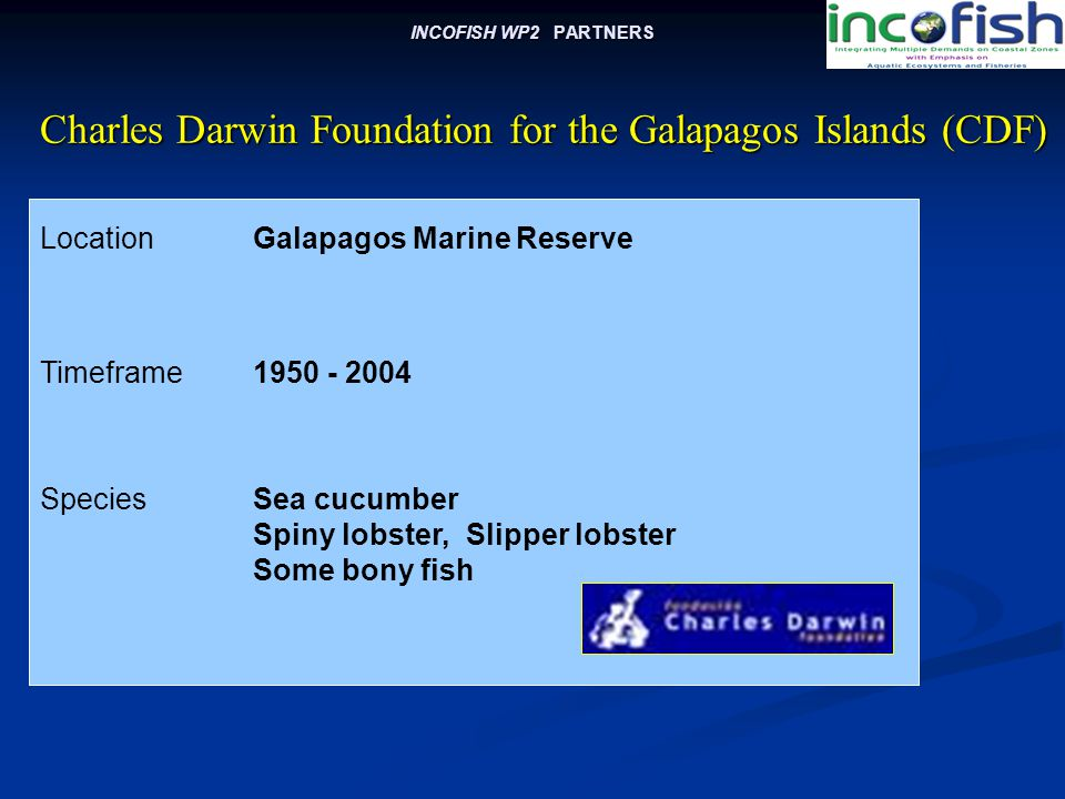 INCOFISH WP2 PARTNERS LocationGalapagos Marine Reserve Charles Darwin Foundation for the Galapagos Islands (CDF) Charles Darwin Foundation for the Galapagos Islands (CDF) Timeframe1950 - 2004 SpeciesSea cucumber Spiny lobster, Slipper lobster Some bony fish