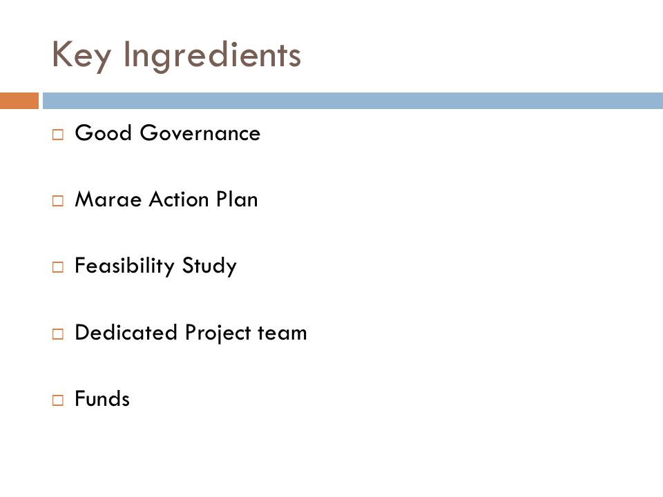 Key Ingredients  Good Governance  Marae Action Plan  Feasibility Study  Dedicated Project team  Funds