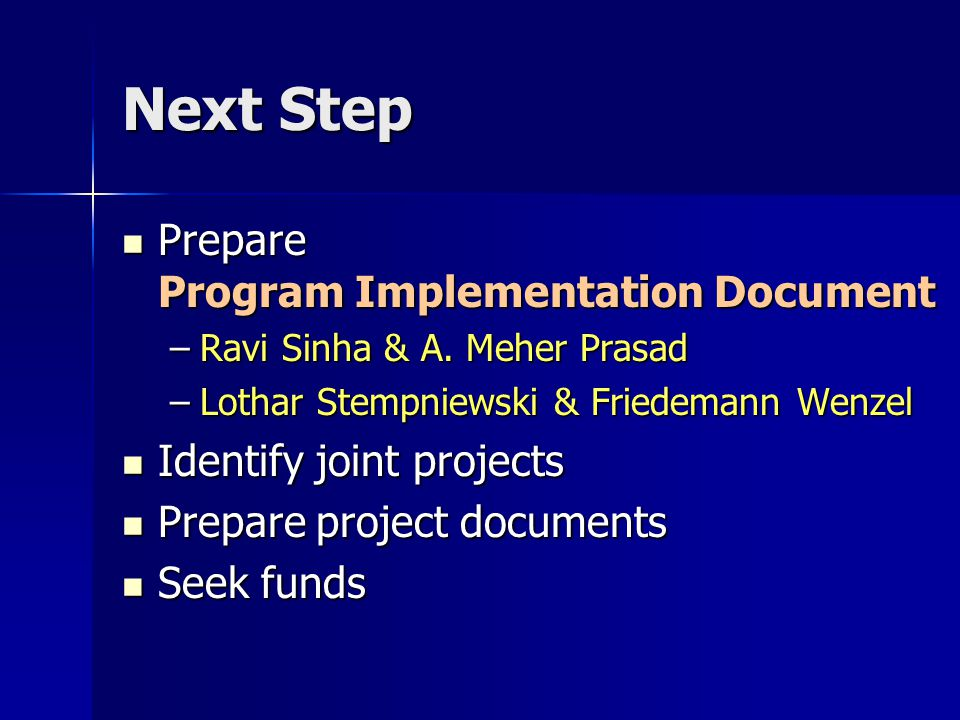 Next Step Prepare Program Implementation Document Prepare Program Implementation Document –Ravi Sinha & A.