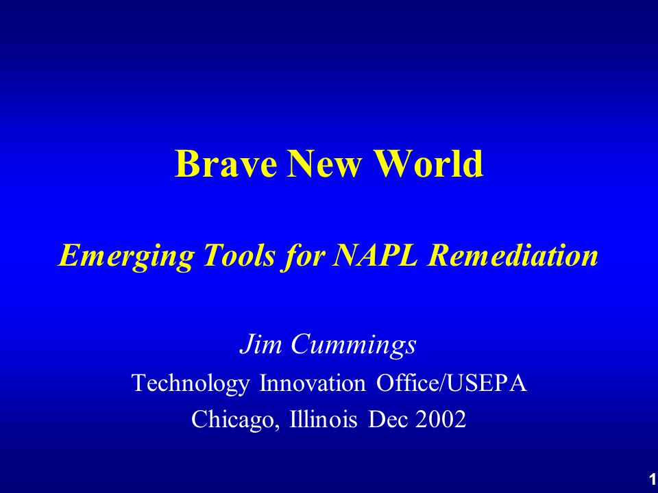 1 Brave New World Emerging Tools for NAPL Remediation Jim Cummings Technology Innovation Office/USEPA Chicago, Illinois Dec 2002