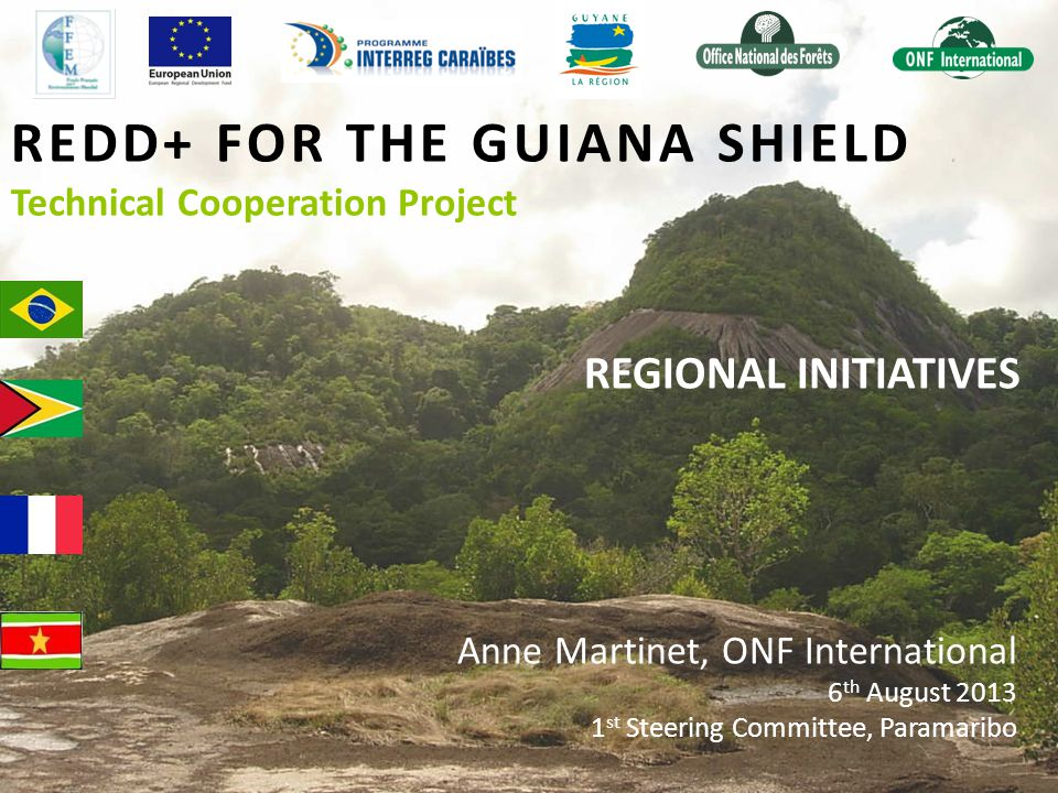 REDD+ FOR THE GUIANA SHIELD Technical Cooperation Project REGIONAL INITIATIVES Anne Martinet, ONF International 6 th August 2013 1 st Steering Committee, Paramaribo