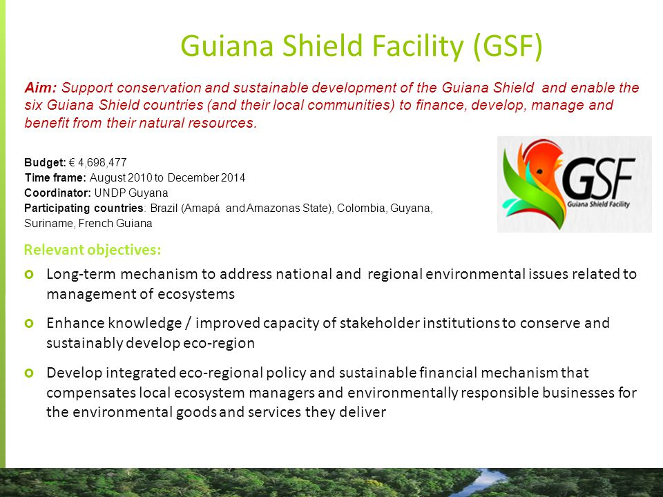 Map credit: Guiana Shield Facility Guiana Shield Facility (GSF) Activities directly related to the project objectives  Strengthening of Guyana's technical capacity to implement MRVs and other REDD+ related activities  National support for REDD+ RPP in Suriname  Regional events (Congress for biodiversity…)  Studies (Assessment of small scale gold mining impacts in the transboundary areas of northeast Brazil, French Guiana and Suriname…)