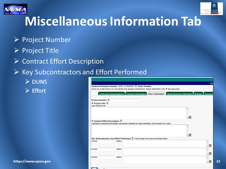 Miscellaneous Information Tab  Project Number  Project Title  Contract Effort Description  Key Subcontractors and Effort Performed  DUNS  Effort