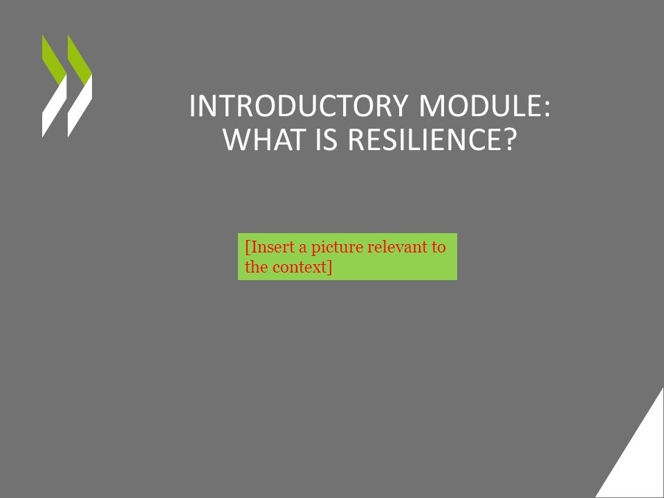 INTRODUCTORY MODULE: WHAT IS RESILIENCE [Insert a picture relevant to the context]
