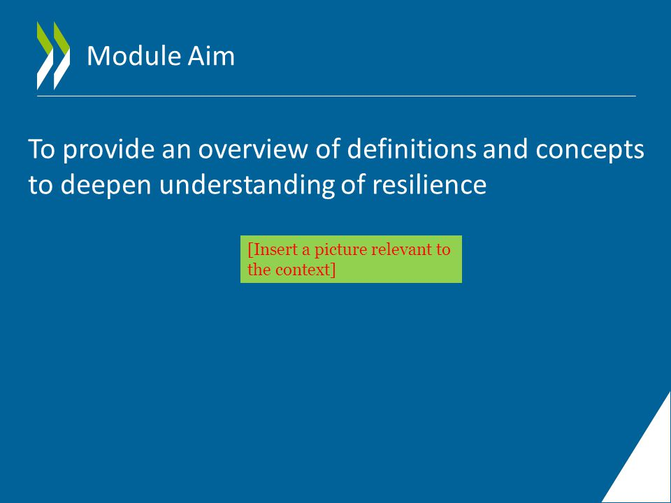 Module Aim To provide an overview of definitions and concepts to deepen understanding of resilience [Insert a picture relevant to the context]