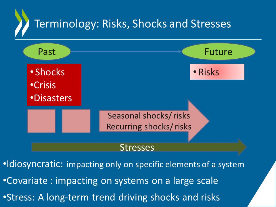 Terminology: Risks, Shocks and Stresses Shocks Crisis Disasters PastFuture Risks Stresses Idiosyncratic: impacting only on specific elements of a system Covariate : impacting on systems on a large scale Stress: A long-term trend driving shocks and risks Seasonal shocks/ risks Recurring shocks/ risks