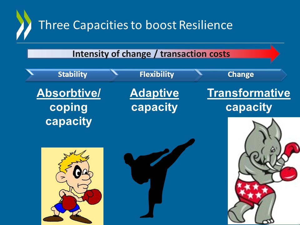 Three Capacities to boost Resilience StabilityFlexibilityChange Absorbtive/ coping capacity Adaptive capacity Transformative capacity Intensity of change / transaction costs