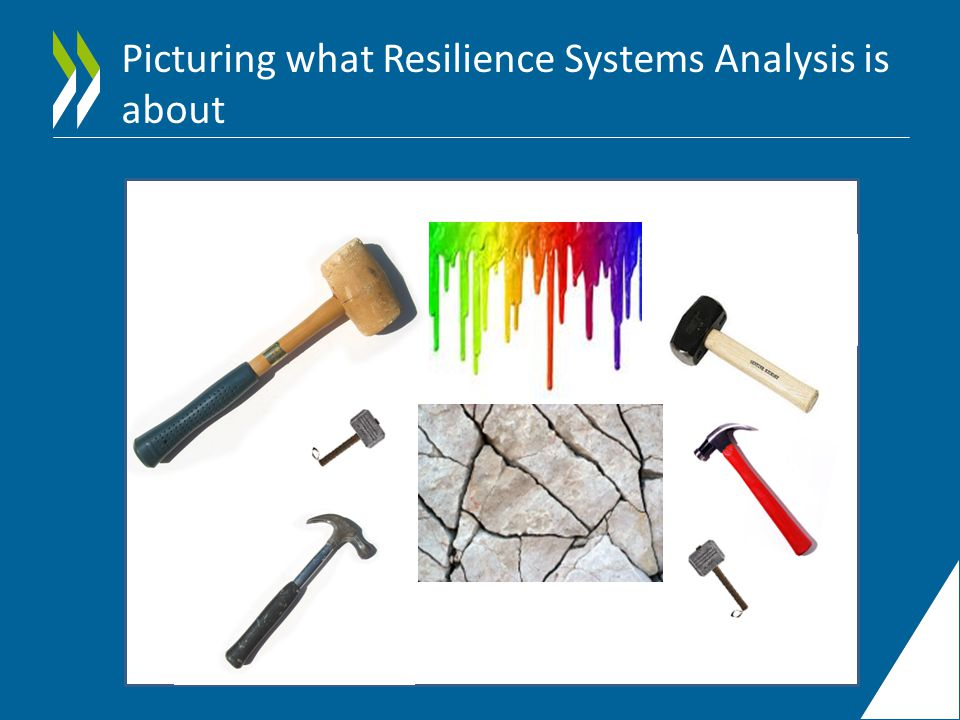 Picturing what Resilience Systems Analysis is about