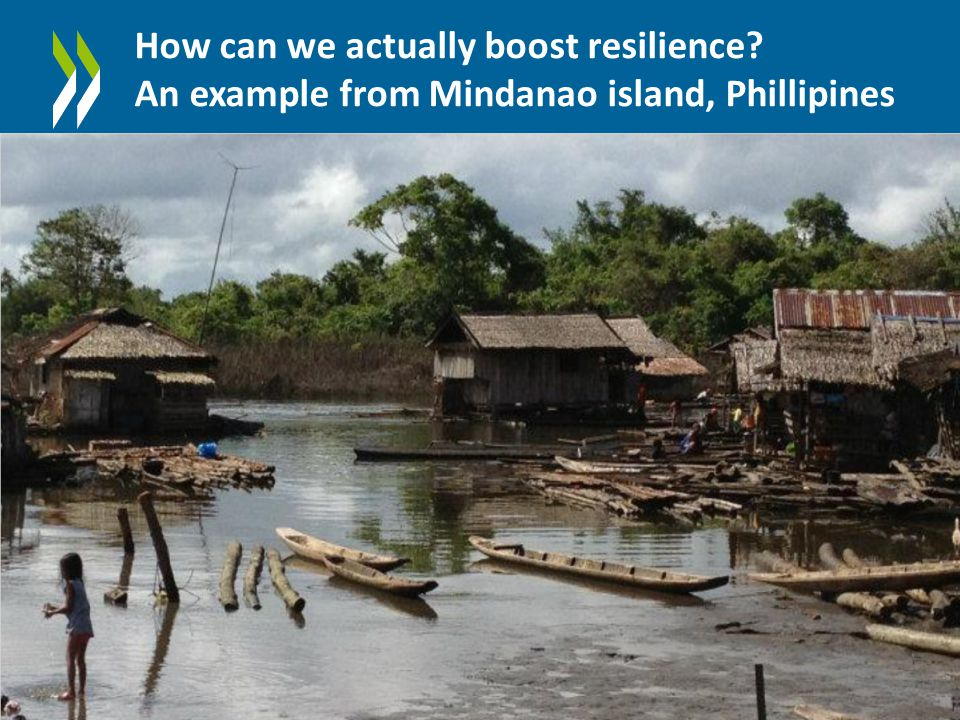How can we actually boost resilience An example from Mindanao island, Phillipines