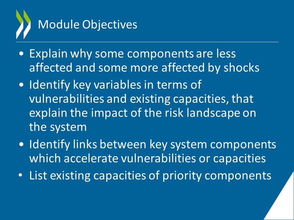 Module Objectives Explain why some components are less affected and some more affected by shocks Identify key variables in terms of vulnerabilities and existing capacities, that explain the impact of the risk landscape on the system Identify links between key system components which accelerate vulnerabilities or capacities List existing capacities of priority components