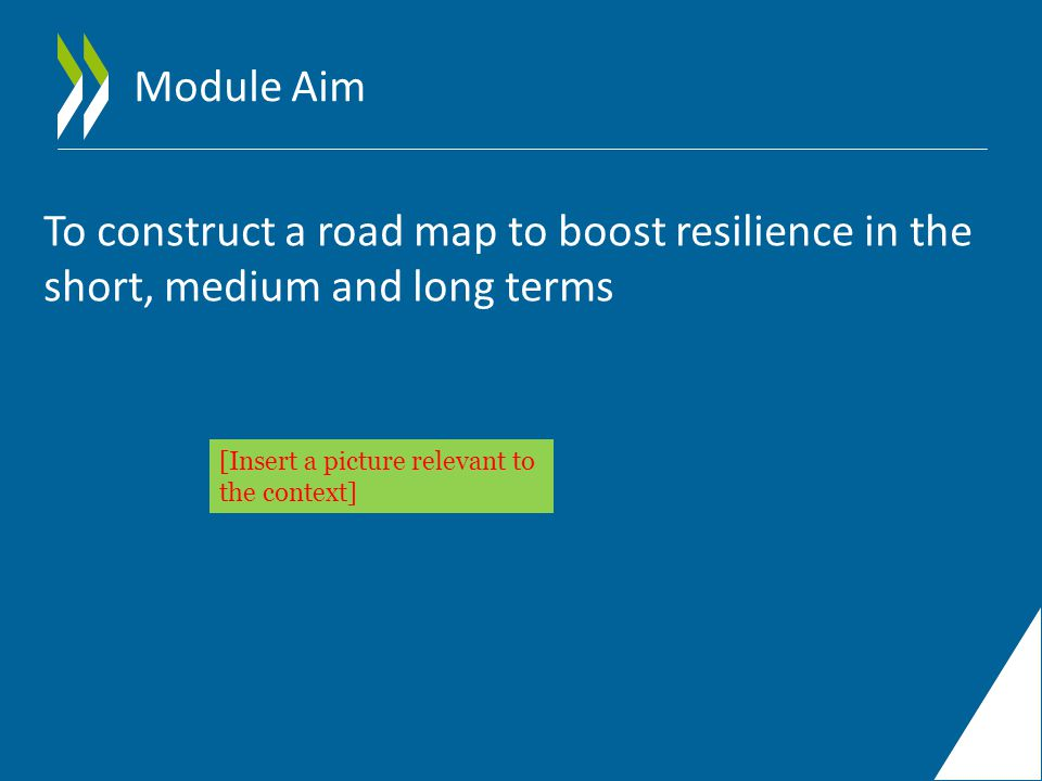 Module Aim To construct a road map to boost resilience in the short, medium and long terms [Insert a picture relevant to the context]