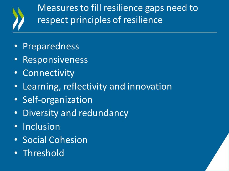 Measures to fill resilience gaps need to respect principles of resilience Preparedness Responsiveness Connectivity Learning, reflectivity and innovation Self-organization Diversity and redundancy Inclusion Social Cohesion Threshold