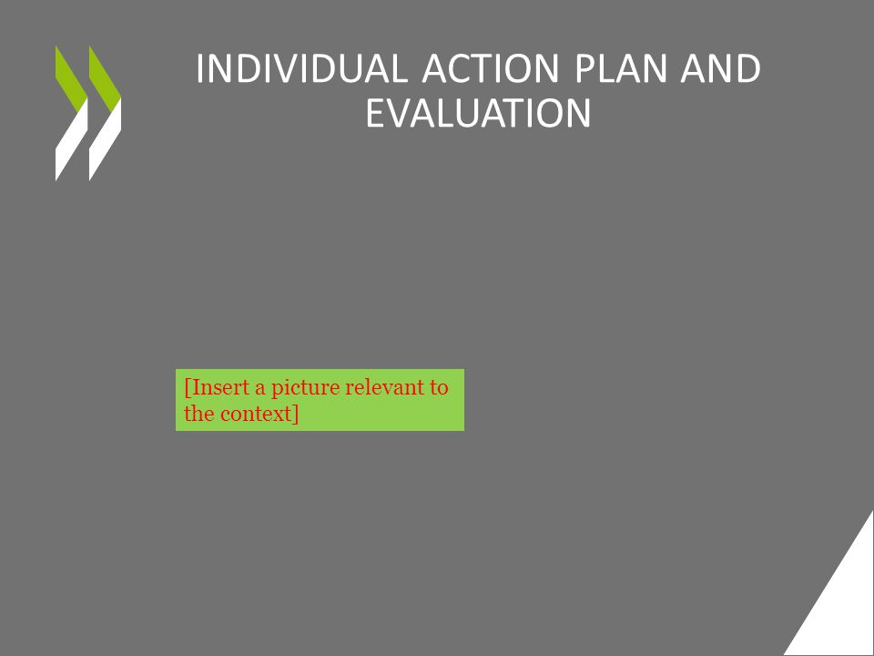 INDIVIDUAL ACTION PLAN AND EVALUATION [Insert a picture relevant to the context]