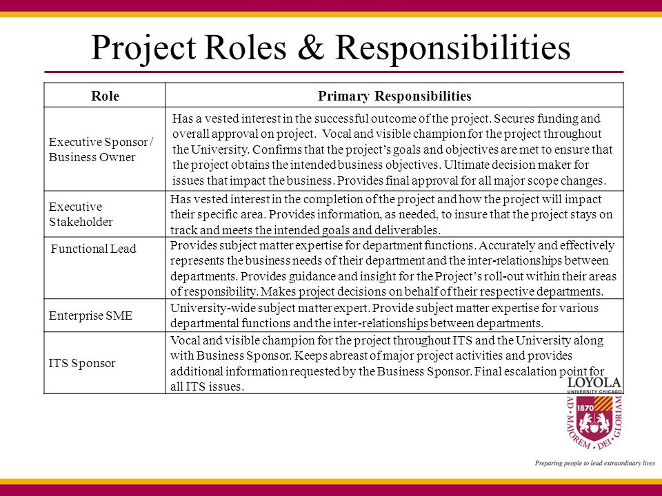Project Roles & Responsibilities RolePrimary Responsibilities Executive Sponsor / Business Owner Has a vested interest in the successful outcome of th