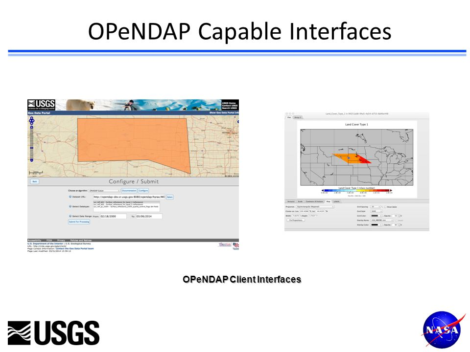 OPeNDAP Capable Interfaces