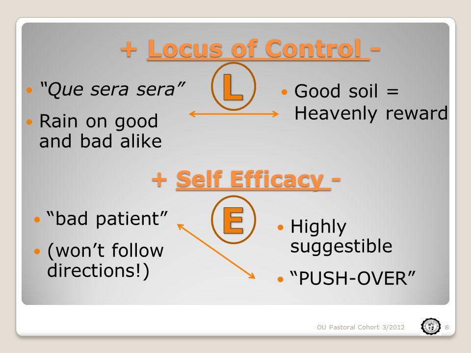 Low Self-Efficacy High Locus of Control L I judge success .