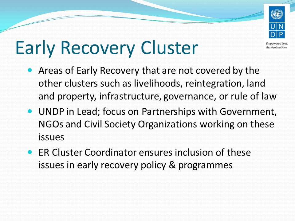 Early Recovery Cluster Areas of Early Recovery that are not covered by the other clusters such as livelihoods, reintegration, land and property, infrastructure, governance, or rule of law UNDP in Lead; focus on Partnerships with Government, NGOs and Civil Society Organizations working on these issues ER Cluster Coordinator ensures inclusion of these issues in early recovery policy & programmes