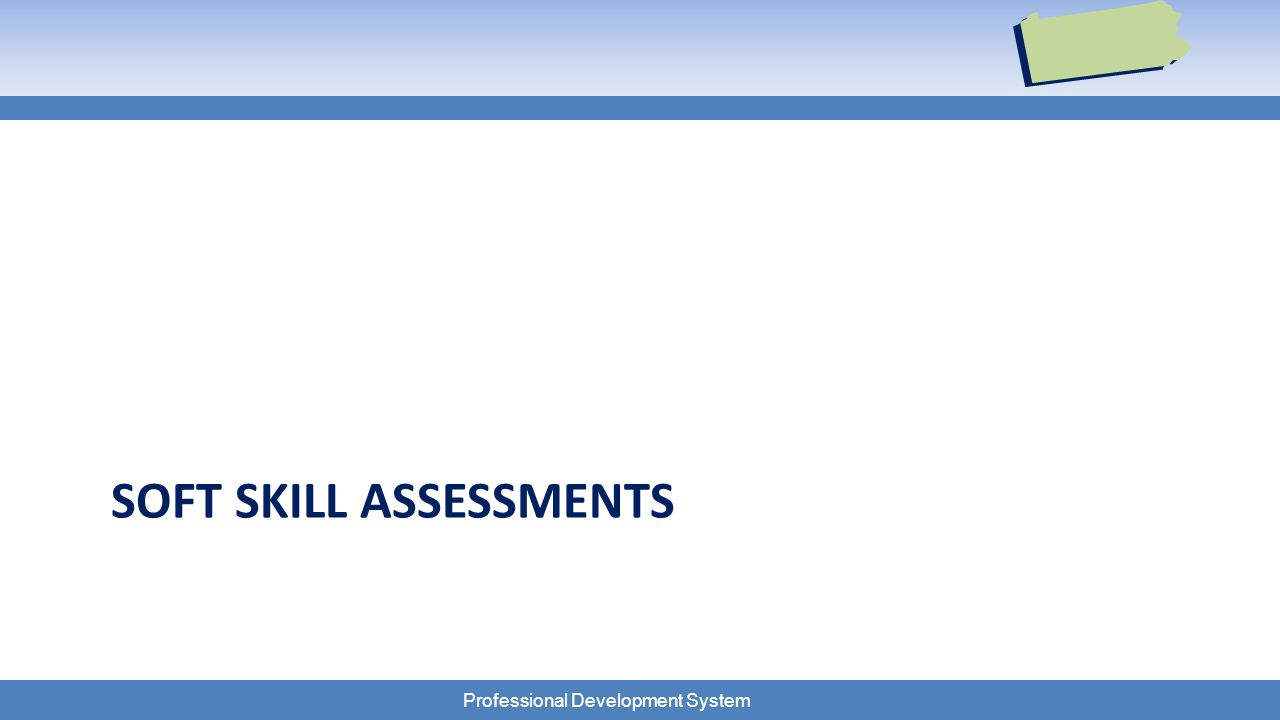 Professional Development System SOFT SKILL ASSESSMENTS