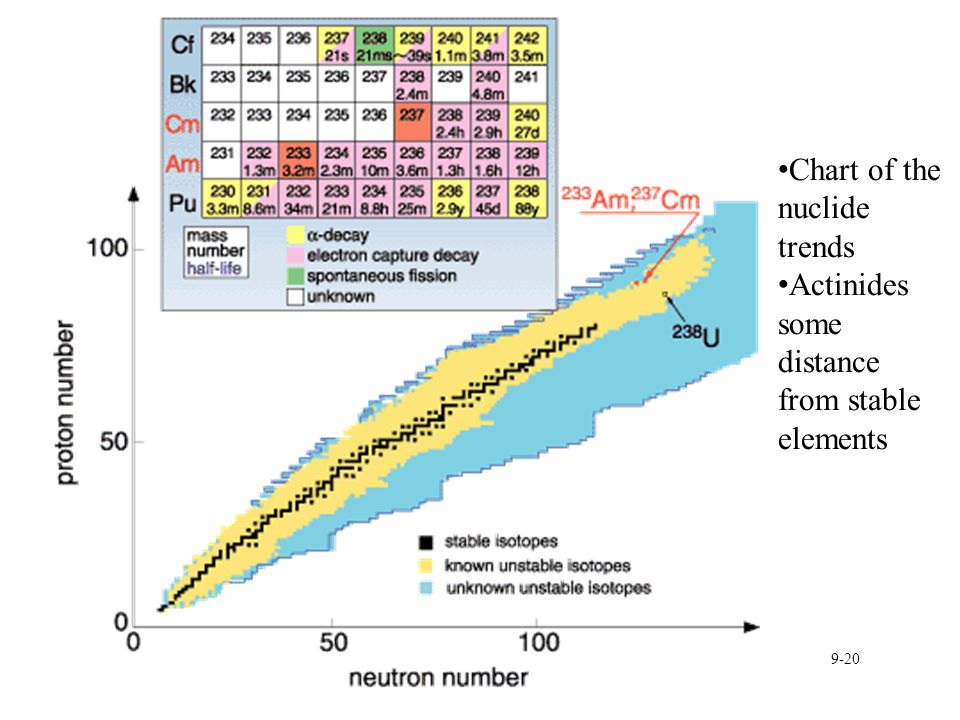 9-20 Chart of the nuclide trends Actinides some distance from stable elements