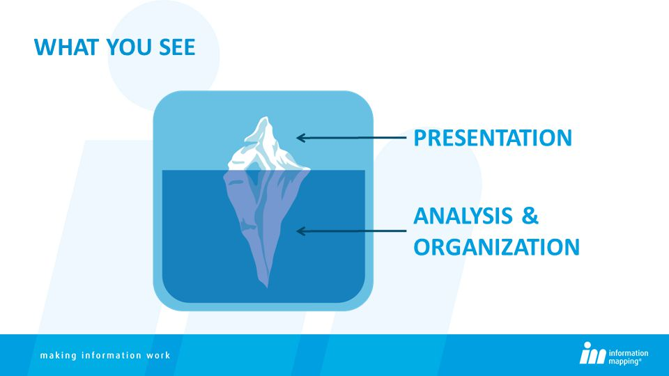 WHAT YOU SEE PRESENTATION ANALYSIS & ORGANIZATION