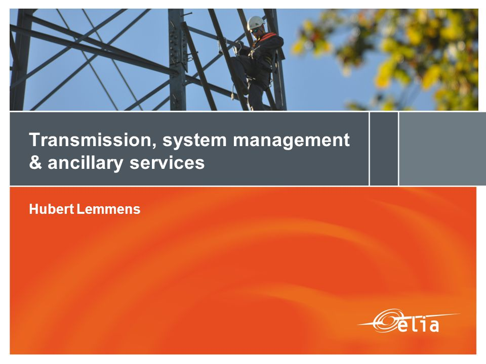 Transmission, system management & ancillary services Hubert Lemmens