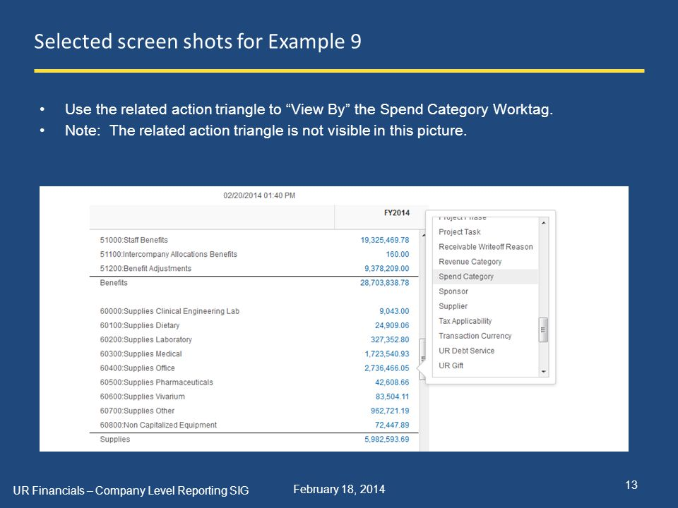 February 18, 2014 Selected screen shots for Example 9 UR Financials – Company Level Reporting SIG 13 Use the related action triangle to View By the Spend Category Worktag.