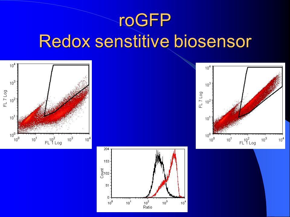 roGFP Redox senstitive biosensor