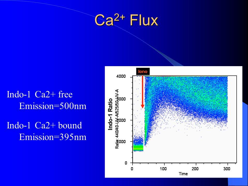 Ca 2+ Flux Indo-1 Ca2+ free Emission=500nm Indo-1 Ca2+ bound Emission=395nm