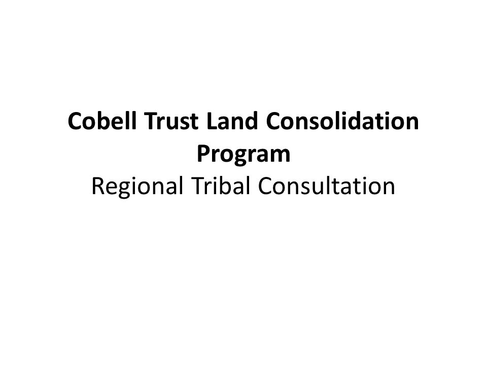 GOAL 3: CONSOLIDATE LAND IN AREAS OF TRIBAL PREFERENCE (TO BE DETERMINED THROUGH TRIBAL CONSULTATION) Strategy 8: Target Tracts Identified by the Tribes Strategy 9: Target Tracts with Economic Opportunity for Tribes