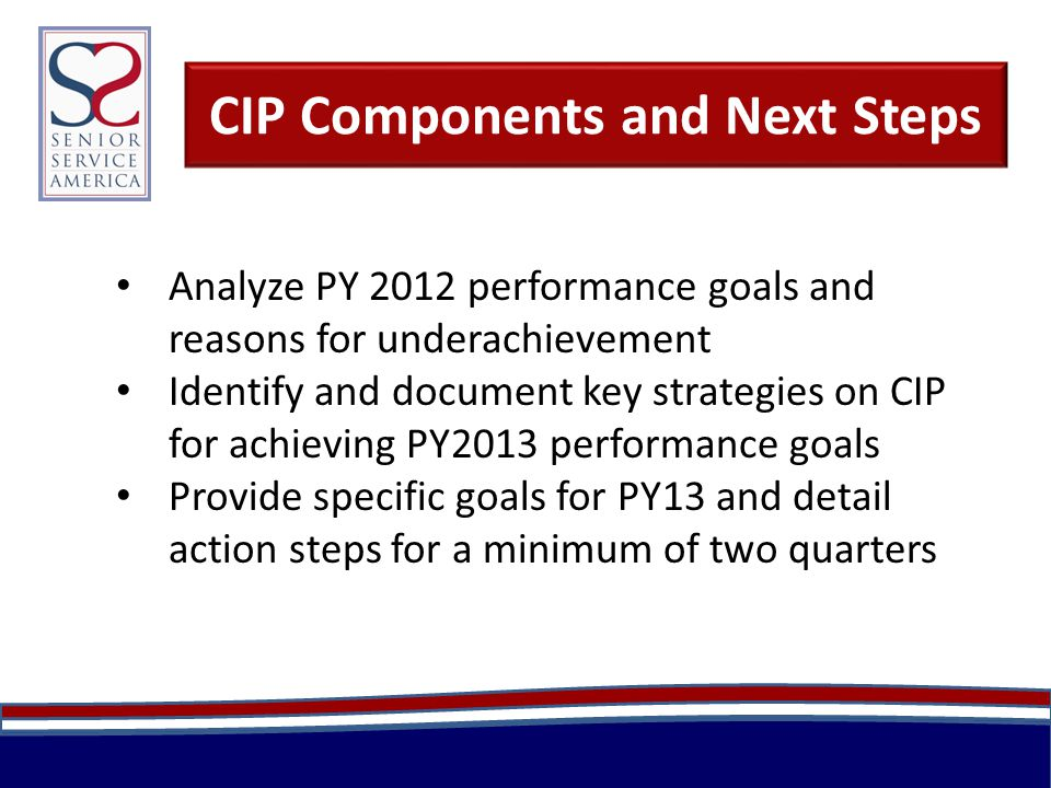 CIP Components and Next Steps Analyze PY 2012 performance goals and reasons for underachievement Identify and document key strategies on CIP for achieving PY2013 performance goals Provide specific goals for PY13 and detail action steps for a minimum of two quarters