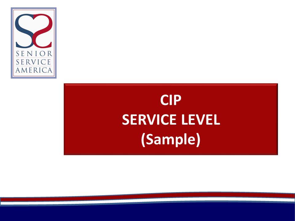 CIP SERVICE LEVEL (Sample)
