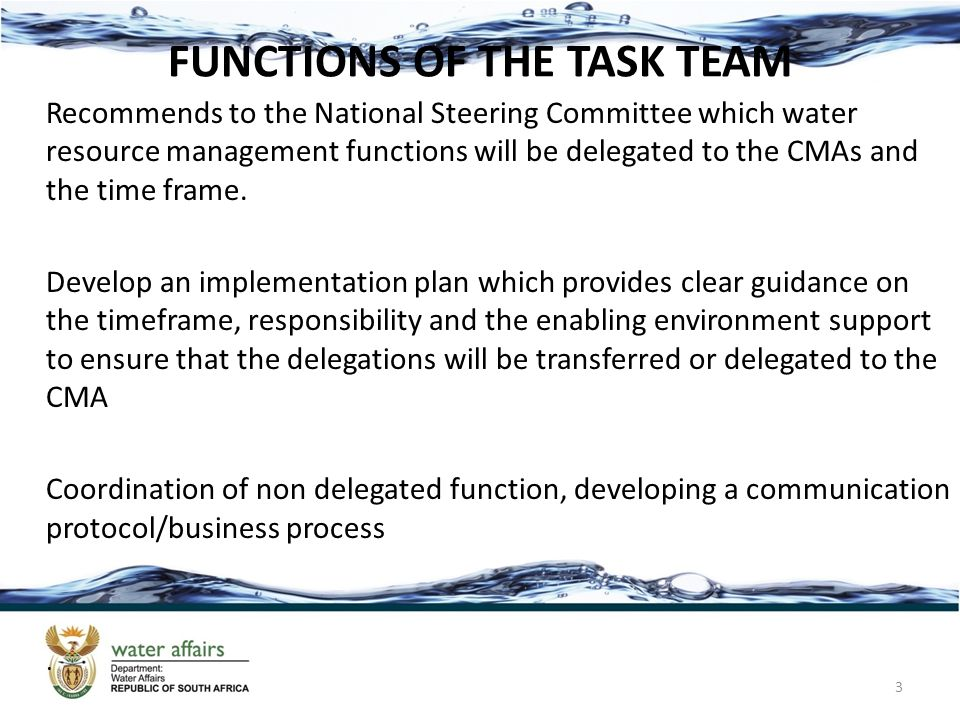 FUNCTIONS OF THE TASK TEAM Recommends to the National Steering Committee which water resource management functions will be delegated to the CMAs and the time frame.