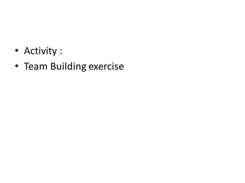 Activity : Team Building exercise