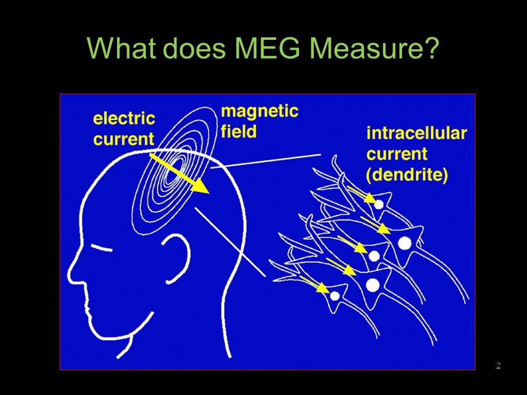 2 What does MEG Measure