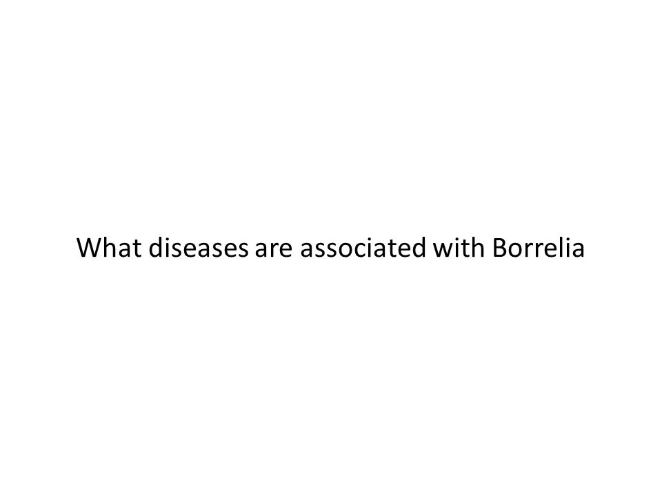 What diseases are associated with Borrelia