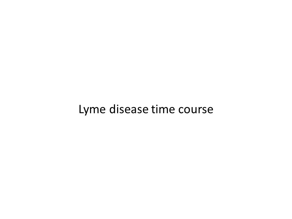 Lyme disease time course