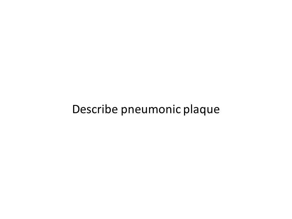 Describe pneumonic plaque