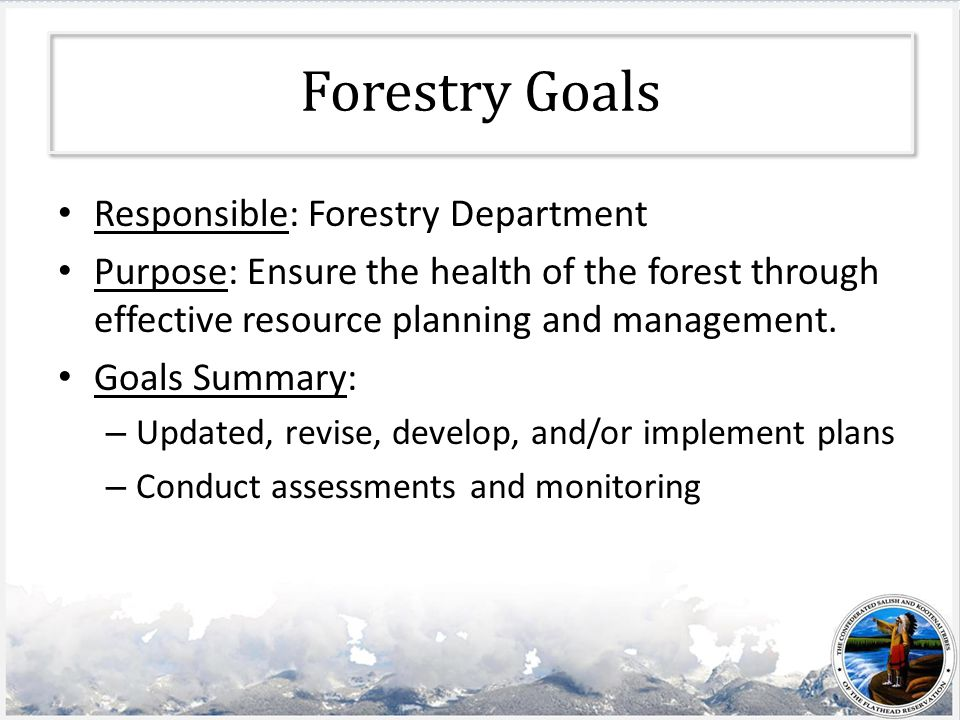 Forestry Goals Responsible: Forestry Department Purpose: Ensure the health of the forest through effective resource planning and management.