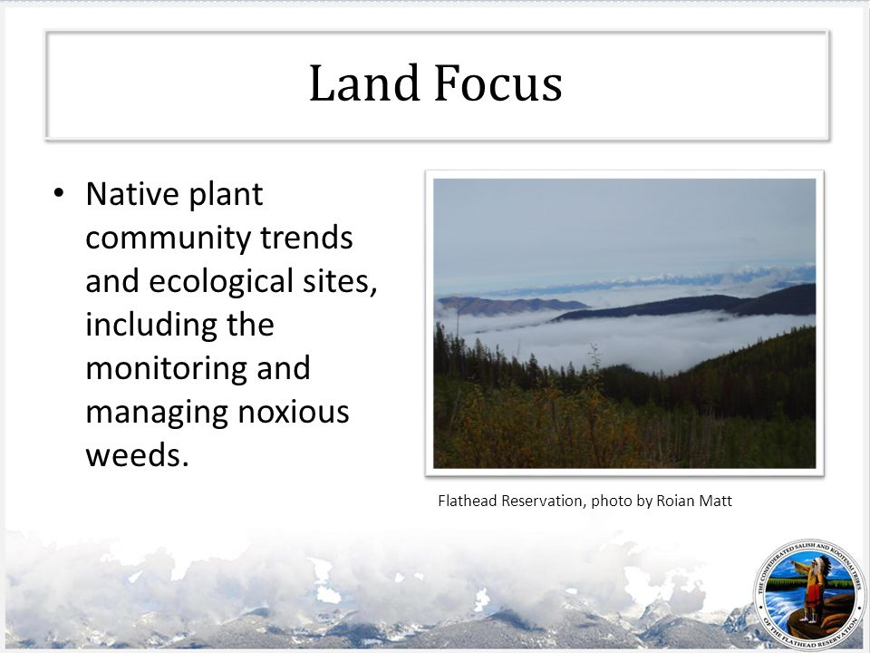 Land Focus Native plant community trends and ecological sites, including the monitoring and managing noxious weeds.