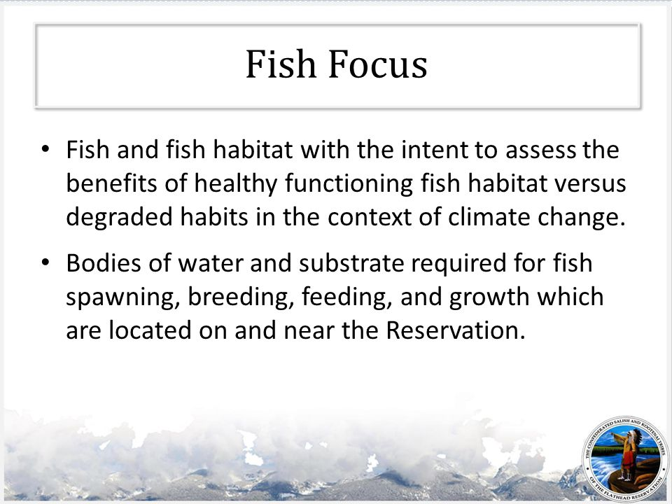 Fish Focus Fish and fish habitat with the intent to assess the benefits of healthy functioning fish habitat versus degraded habits in the context of climate change.