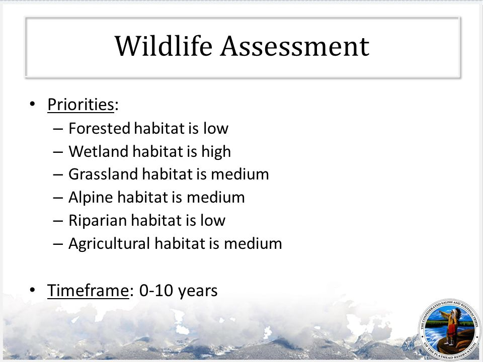 Wildlife Assessment Priorities: – Forested habitat is low – Wetland habitat is high – Grassland habitat is medium – Alpine habitat is medium – Riparian habitat is low – Agricultural habitat is medium Timeframe: 0-10 years
