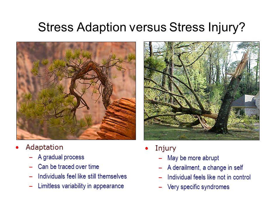 Stress Adaption versus Stress Injury.