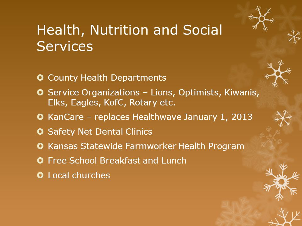 Health, Nutrition and Social Services  County Health Departments  Service Organizations – Lions, Optimists, Kiwanis, Elks, Eagles, KofC, Rotary etc.