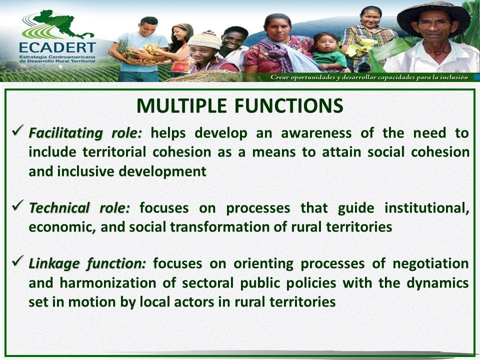 MULTIPLE FUNCTIONS Facilitating role: Facilitating role: helps develop an awareness of the need to include territorial cohesion as a means to attain social cohesion and inclusive development Technical role: Technical role: focuses on processes that guide institutional, economic, and social transformation of rural territories Linkage function: Linkage function: focuses on orienting processes of negotiation and harmonization of sectoral public policies with the dynamics set in motion by local actors in rural territories
