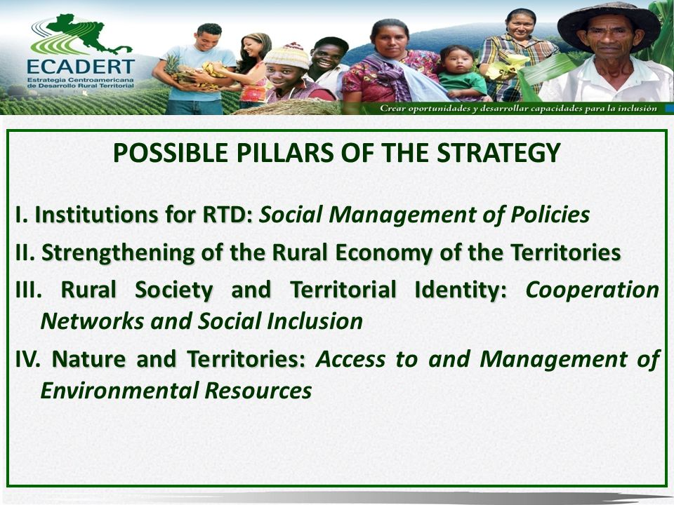 POSSIBLE PILLARS OF THE STRATEGY Institutions for RTD: I.